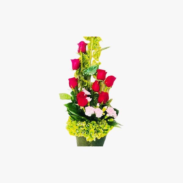 Rosas en base de molucela metálica