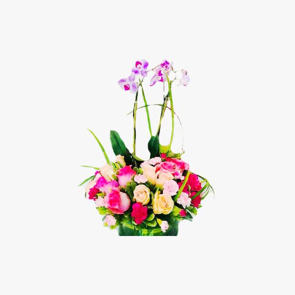 Rosas de colores con planta de orquídea en base de vidrio
