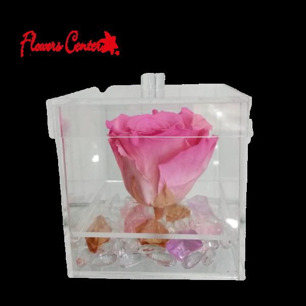 Rosas Preservadas Flowers Center